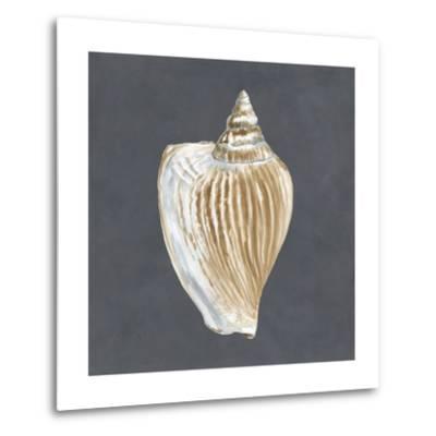 Shell on Slate VI-Megan Meagher-Metal Print