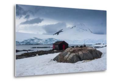 Port Lockroy Research Station, Antarctica, Polar Regions-Michael Runkel-Metal Print