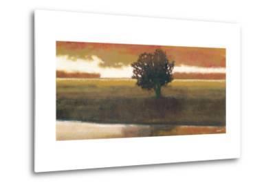 Panoramic Horizon I-Norman Wyatt Jr^-Metal Print
