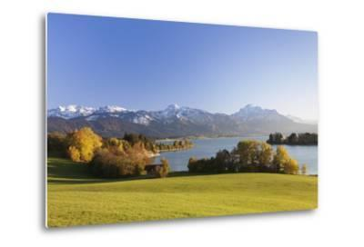 Forggensee Lake and Allgau Alps, Fussen, Ostallgau, Allgau, Allgau Alps, Bavaria, Germany, Europe-Markus Lange-Metal Print