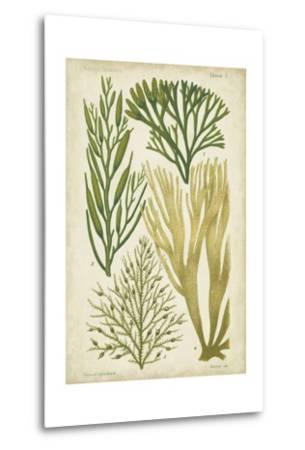 Seaweed Specimen in Green III-Vision Studio-Metal Print