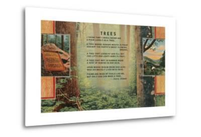 Joyce Kilmer Trees Poem, Forest--Metal Print