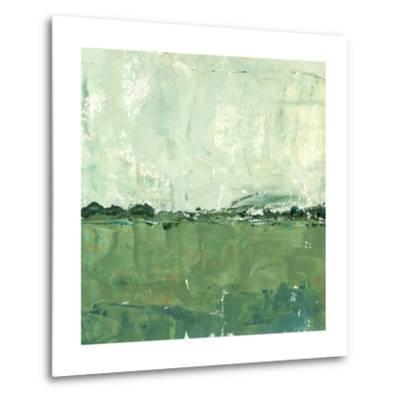Vista Impression II-Ethan Harper-Metal Print