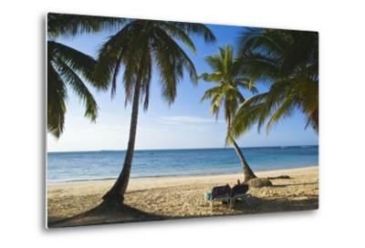 Palm Trees on Beach, Las Terrenas, Samana Peninsula, Dominican Republic-Massimo Borchi-Metal Print