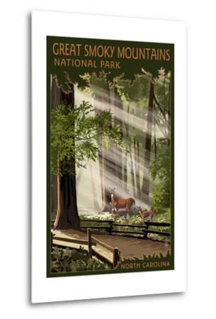 Great Smoky Mountains, North Carolina - Pathway in Trees-Lantern Press-Metal Print