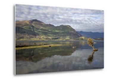 Reflection in Lake Wanaka, Wanaka, Otago, South Island, New Zealand, Pacific-Stuart Black-Metal Print