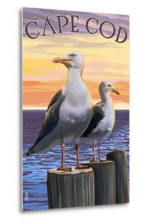 Cape Cod, Massachusetts - Seagulls-Lantern Press-Metal Print