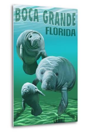 Boca Grande, Florida - Manatees-Lantern Press-Metal Print