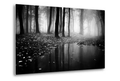 Woods-PhotoINC-Metal Print