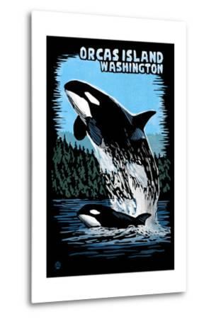 Orcas Island, Washington - Orca and Calf Scratchboard-Lantern Press-Metal Print