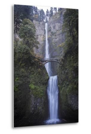 Falls on Multnomah Creek in the Columbia River Gorge-Macduff Everton-Metal Print