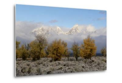 Clouds Clear from the Tetons after a Fall Storm-Barrett Hedges-Metal Print