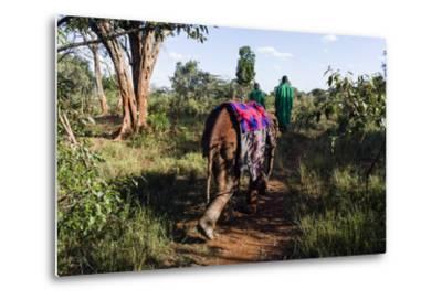 An Orphaned African Elephant with a Sleeping Blanket Follows a Carer Through the Forest-Jason Edwards-Metal Print