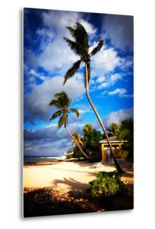 Palm Trees Sway over a Beach in the Cayman Islands in the Caribbean-Chris Bickford-Metal Print