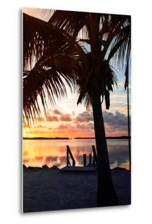 Silhouette at Sunset - Florida-Philippe Hugonnard-Metal Print