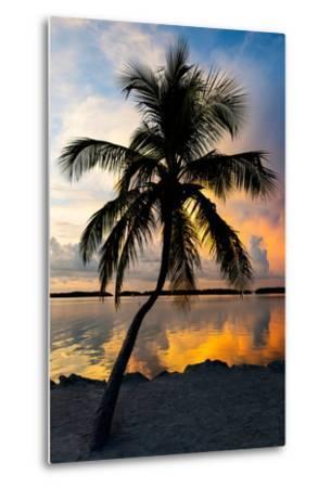 Palm Tree at Sunset - Florida-Philippe Hugonnard-Metal Print