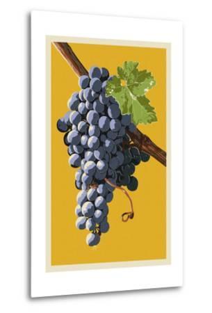 Wine Grapes-Lantern Press-Metal Print