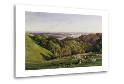 Evening in Arundel Park, Sussex, England-Charles James Adams-Metal Print
