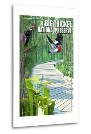 Big Thicket National Preserve, Texas-Lantern Press-Metal Print