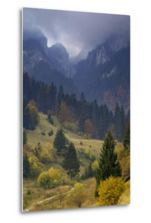 Rock of the King, Piatra Craiului National Park, Transylvania, Carpathian Mountains, Romania-D?rr-Metal Print