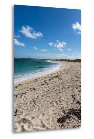 Remote White Sand Beach in Barbuda, Antigua and Barbuda, West Indies, Caribbean, Central America-Michael Runkel-Metal Print