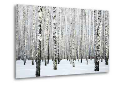 Winter Birch Forest-LeniKovaleva-Metal Print