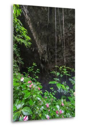 A Green Lush Jungle Entrance to the Grotto Azul Cave System in Bonito, Brazil-Alex Saberi-Metal Print