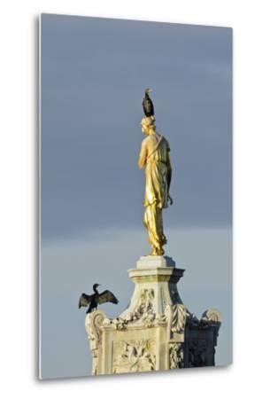 Common Comorants Perched on Statue Drying Out, Bushy Park, London, England, UK, November-Terry Whittaker-Metal Print