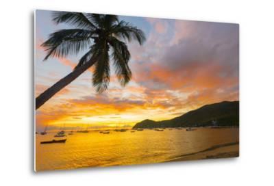 Caribbean, Martinique, Les Anse D'Arlet, Grand Anse Beach-Alan Copson-Metal Print
