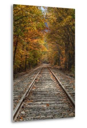 Autumn Tracks, New Hampshire-Vincent James-Metal Print