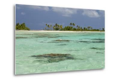 Palm Trees Along a Tropical Beach, and Coral Heads Visible Through Crystal Clear, Blue Water-Sergio Pitamitz-Metal Print