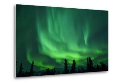 Aurora Borealis at Chena Hot Springs, Fairbanks, Alaska, Usa-Christian Heeb-Metal Print