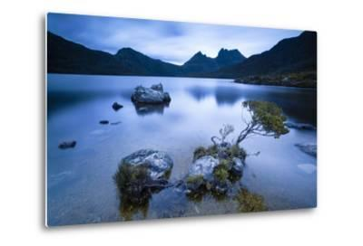 Cradle Mountain National Park, Tasmania, Australia. Dove Lake at Sunrise-Matteo Colombo-Metal Print