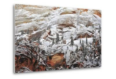 Snow-Covered Evergreen Trees, Cliffs, and Rock Formations in a Desert-Keith Ladzinski-Metal Print