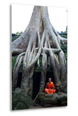 A Theraveda Buddhist Monk at the Ta Prohm Temple in the Angkor Complex-Kike Calvo-Metal Print