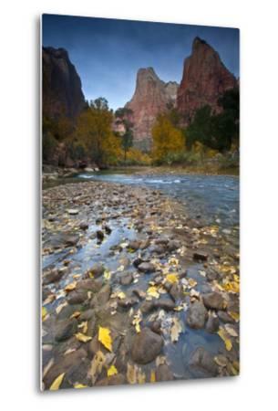 USA, Utah, Zion National Park. the Sentinel with Fallen Leaves in Virgin River-Jaynes Gallery-Metal Print