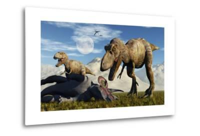 A Pair of Tyrannosaurus Rex Dinosaurs Ready to Make a Meal of a Dead Triceratops-Stocktrek Images-Metal Print