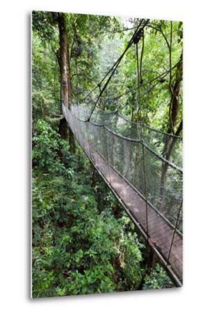 Suspension Bridge, Rainmaker Conservation Project, Costa Rica-Susan Degginger-Metal Print