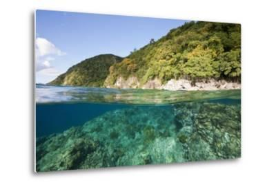 Coast of Dominica above and below Water-Reinhard Dirscherl-Metal Print