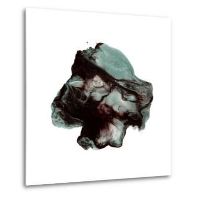 Polished in Juniper Berry--Metal Print