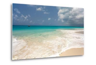 Barbuda Beach, Caribbean-Susan Degginger-Metal Print