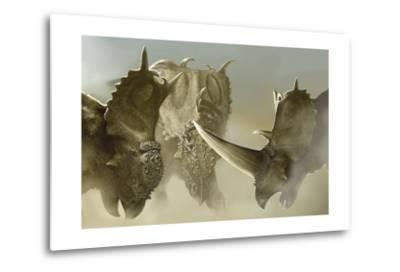 A Group of Pachyrhinosaurus Dinosaurs-Stocktrek Images-Metal Print