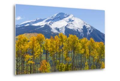 Colorado. Fall Aspens and Mountain-Jaynes Gallery-Metal Print