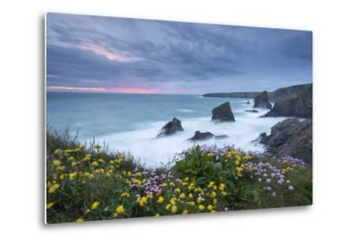 Wildflowers Growing on the Clifftops Above Bedruthan Steps on a Stormy Evening, Cornwall, England-Adam Burton-Metal Print