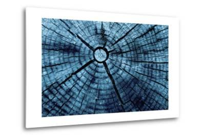 Tree Rings 2-GI ArtLab-Metal Print