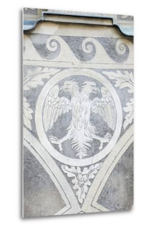 Double Headed Eagle-Rob Tilley-Metal Print