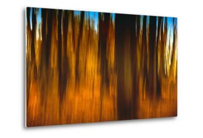 An Impressionistic in Camera Blur of Colorful Autumn Trees-Rona Schwarz-Metal Print