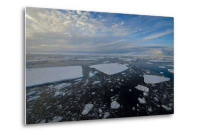 Antarctica, Near Adelaide Island. the Gullet. Ice Floes and Brash Ice-Inger Hogstrom-Metal Print