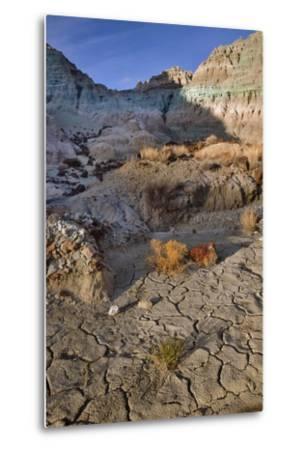 Blue Basin Unit-Steve Terrill-Metal Print