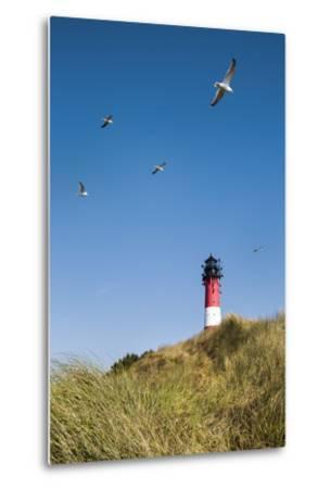 Lighthouse, Hörnum, Sylt Island, Northern Frisia, Schleswig-Holstein, Germany-Sabine Lubenow-Metal Print